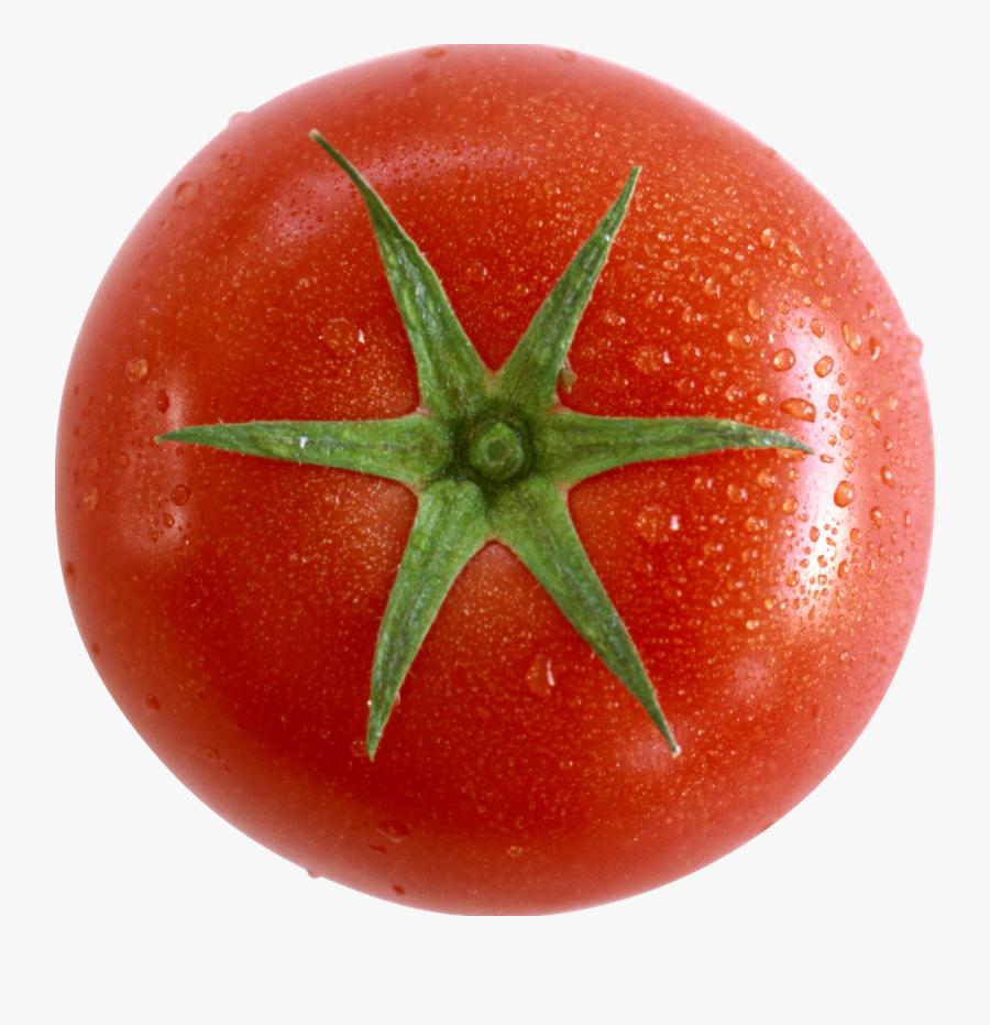 Clip Art Carolina Gold Tomato - Tomato, Transparent Clipart