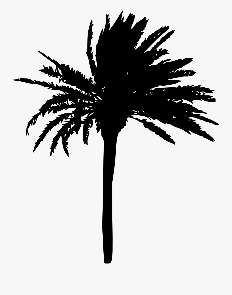 Clip Art Freeuse Stock Palm Tree Black And White Clipart - Palm Trees Silhouette Transparent, Transparent Clipart