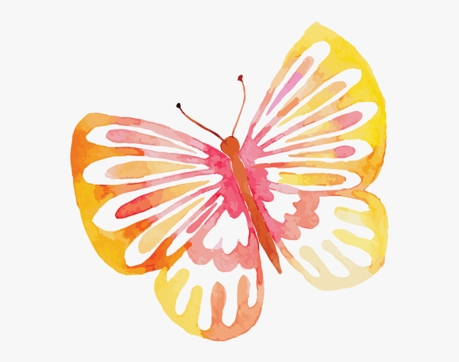 Butterfly Watercolor Free, Transparent Clipart