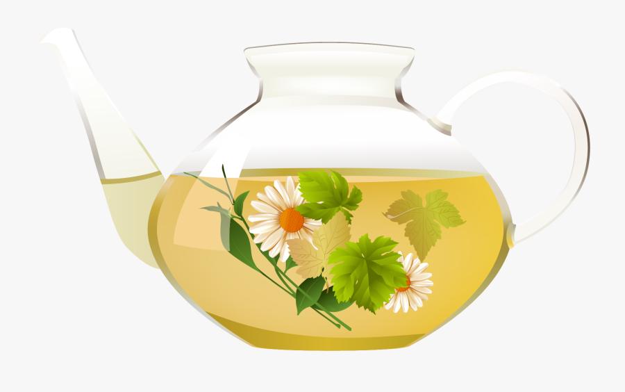 Chrysanthemum Tea Coffee Green Tea Clip Art - Global Herbal Tea Market, Transparent Clipart
