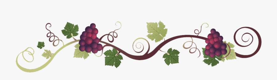 Romano S Italian Restaurant - Grape Vine Wine Border Clipart Transparent, Transparent Clipart