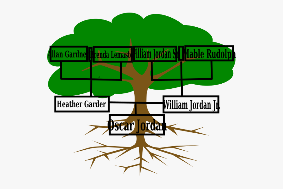 Roots Of American Democracy Tree, Transparent Clipart