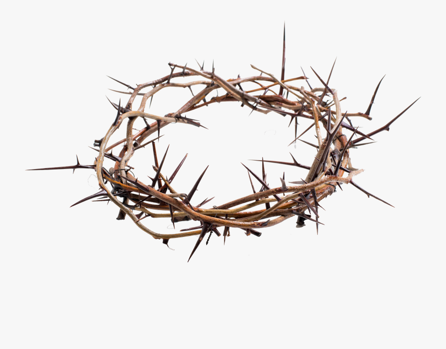 Crown Of Thorns Png Transparent - Crown Of Thorns Png, Transparent Clipart