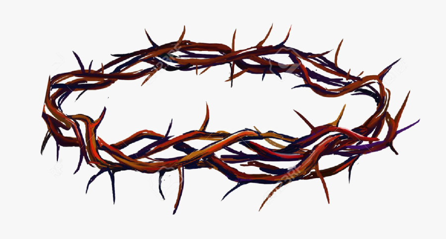 Crown Of Thorns Png Photo - Crown Of Thorns Transparent Background, Transparent Clipart