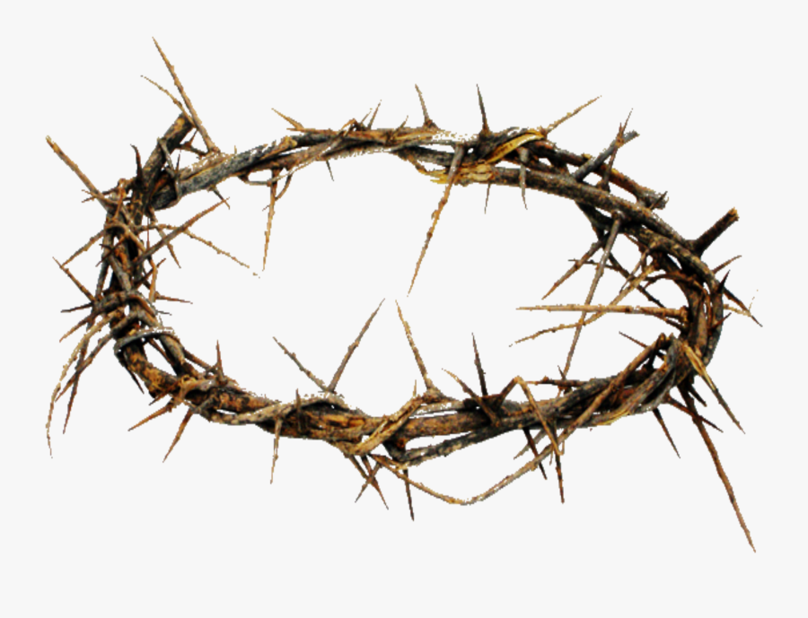 Crown Of Thorns Png Hd Transparent Crown Of Thorns - Jesus Crown Of Thorns Made, Transparent Clipart