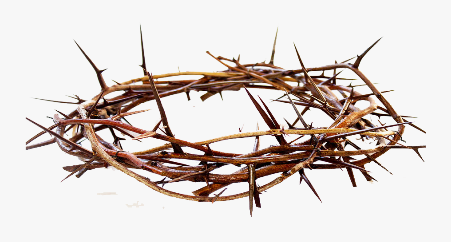 Crown Of Thorns Png Free Pic - Crown Of Thorns Png, Transparent Clipart