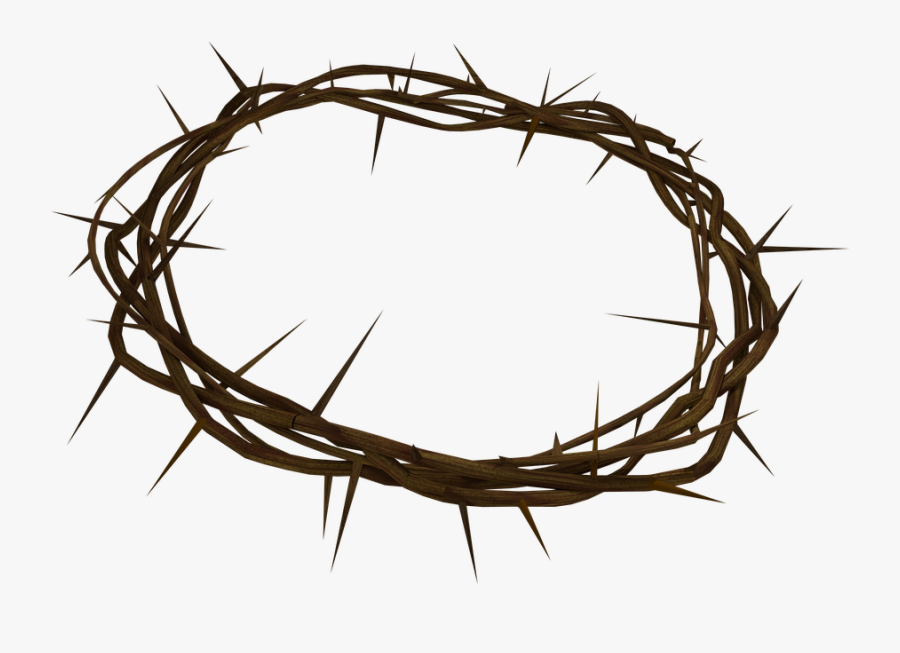 Crown Of Thorns Png Background - Crown Of Thorns Transparent, Transparent Clipart