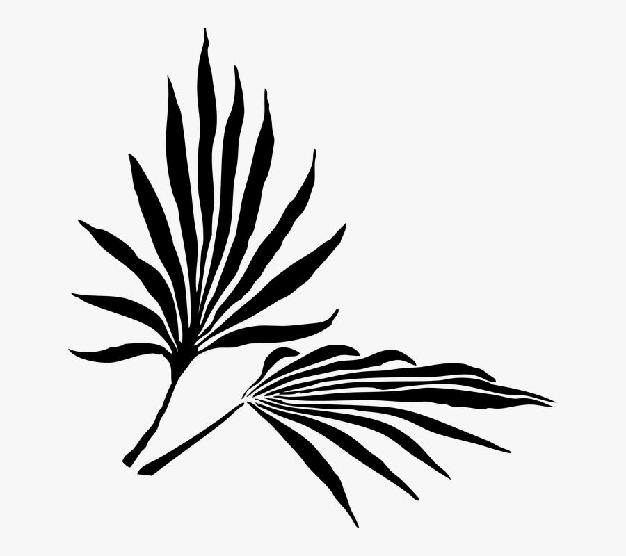 Clip Art Palm Sunday Images - Palm Frond Clip Art, Transparent Clipart