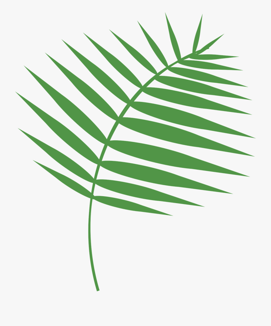 Transparent Free Holy Week Clipart - Free Palm Sunday Vector, Transparent Clipart