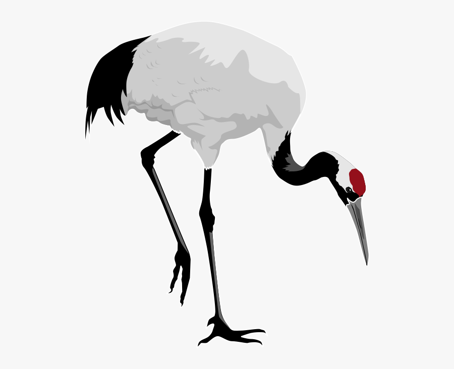 Red Crane Clipart - Red Crowned Crane Transparent, Transparent Clipart