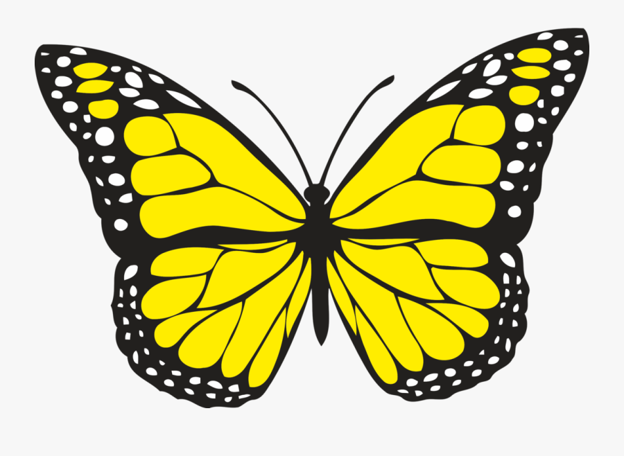 Yellow Butterfly, Transparent Clipart