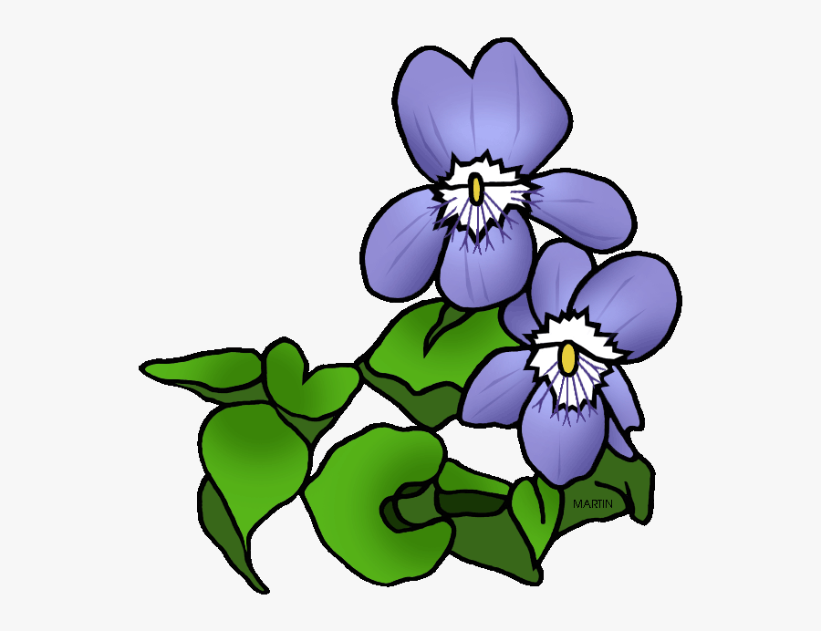 Rhode Island Clipart Wisconsin State Flower Png Free Transparent Clipart Clipartkey