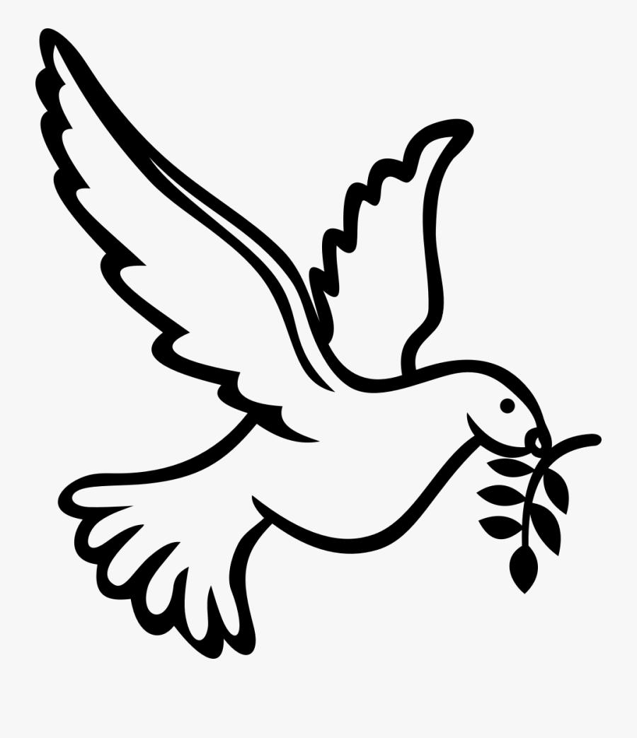 Clip Art Columbidae Calvary Chapel West - Dove Holy Spirit Drawing, Transparent Clipart