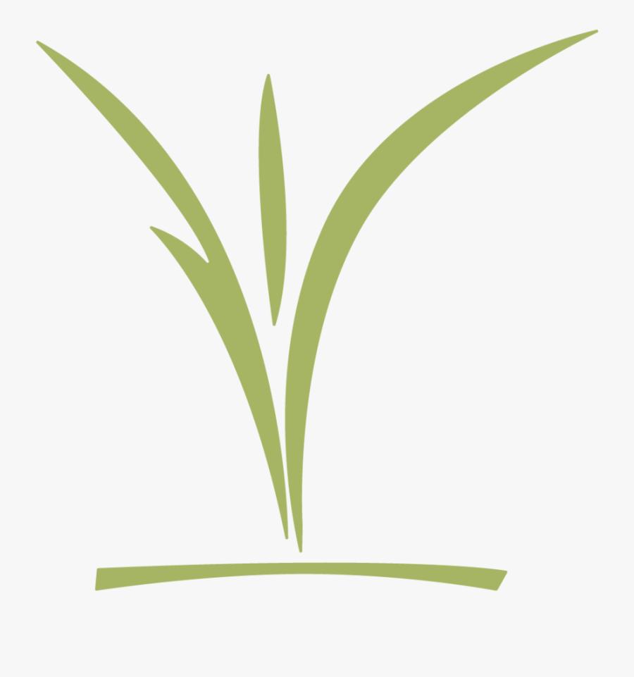 Ccc Childrens Logo Green - Grass, Transparent Clipart