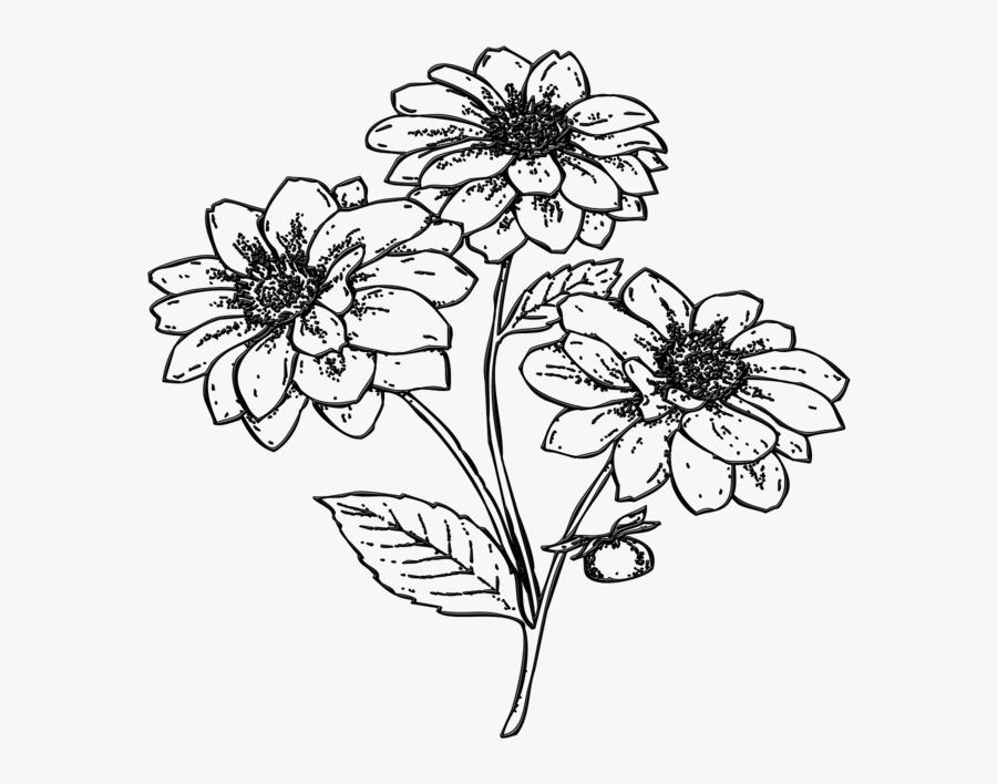 Gambar Ilustrasi Flora Bunga, Transparent Clipart