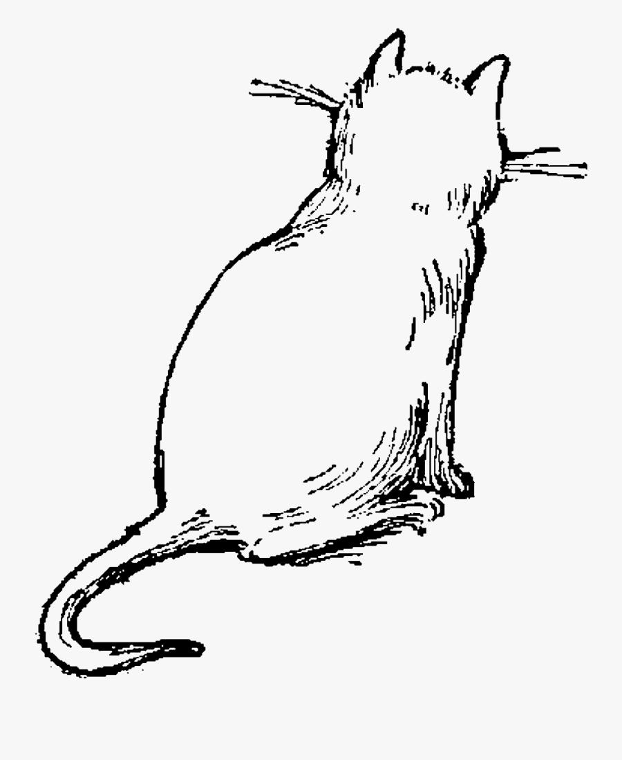 Cat Drawing Cat Illustration Png, Transparent Clipart