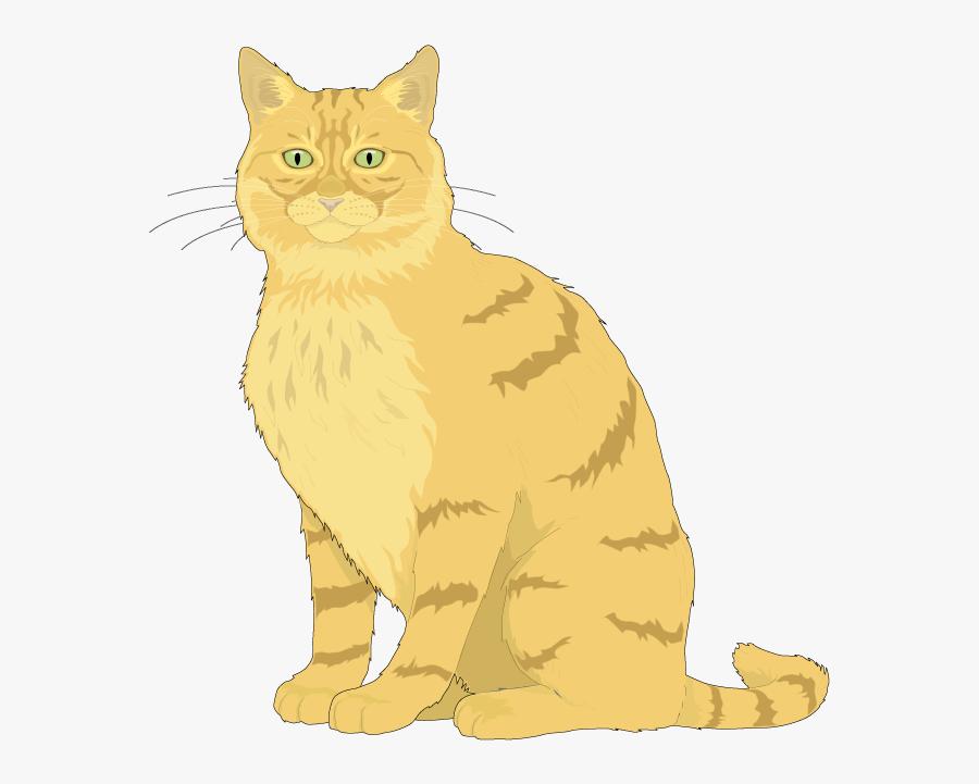 Ragdoll Kitten Euclidean Vector Clip Art - Cat Vector, Transparent Clipart
