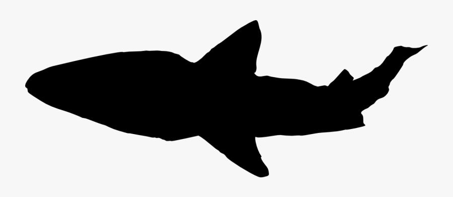 Transparent Shark Clipart Black And White - Portable Network Graphics, Transparent Clipart