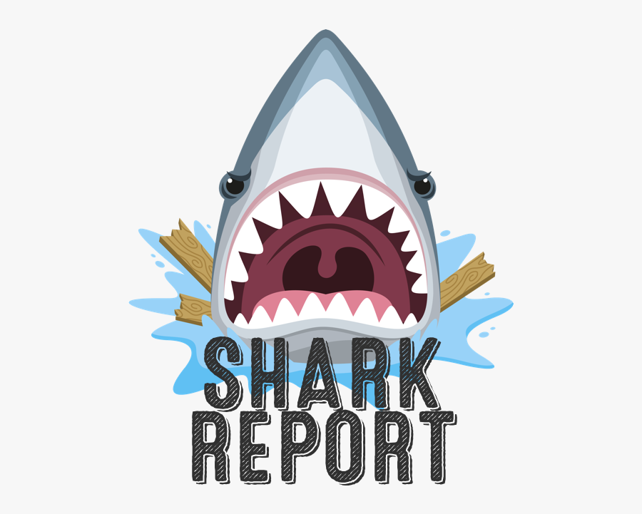 Shark Head Drawing Cartoon Clipart , Png Download - Great White Shark, Transparent Clipart