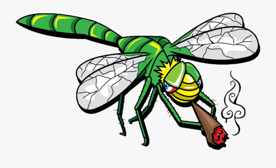 Insect,pest,clip Art,membrane Winged Insect,dragonflies, Transparent Clipart