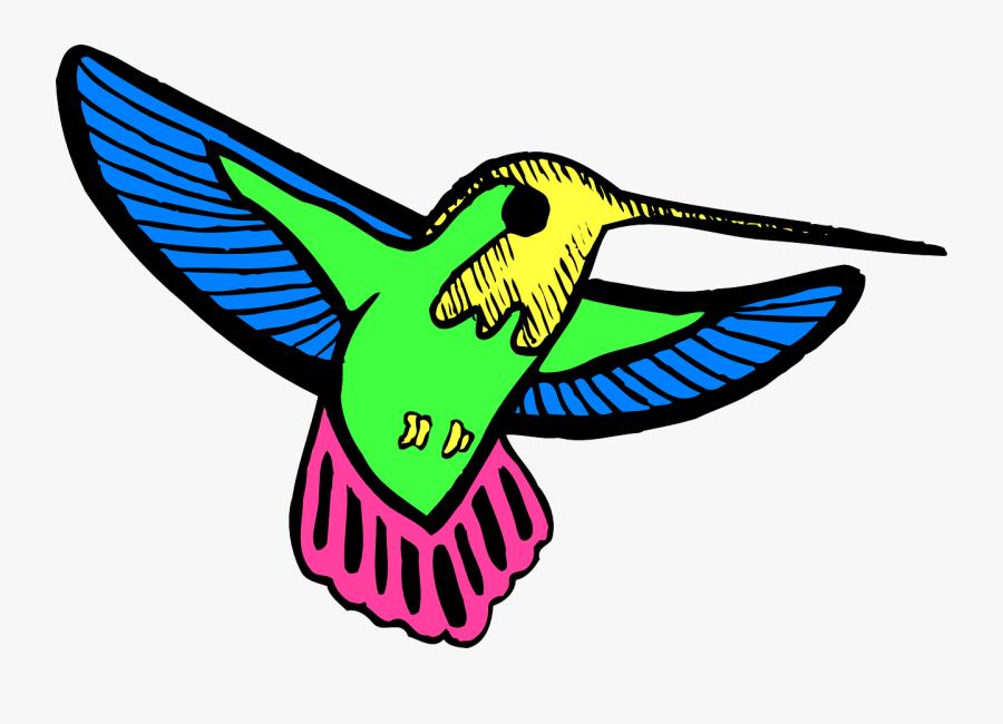 Bird Wings Hummingbird Free Picture - Hummingbird Colorful Cartoon, Transparent Clipart