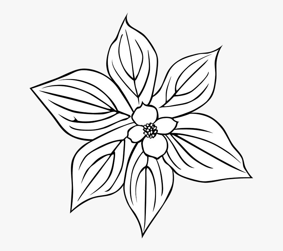 Flower Outline Svg Clip Arts - Flowering Dogwood Coloring Page, Transparent Clipart