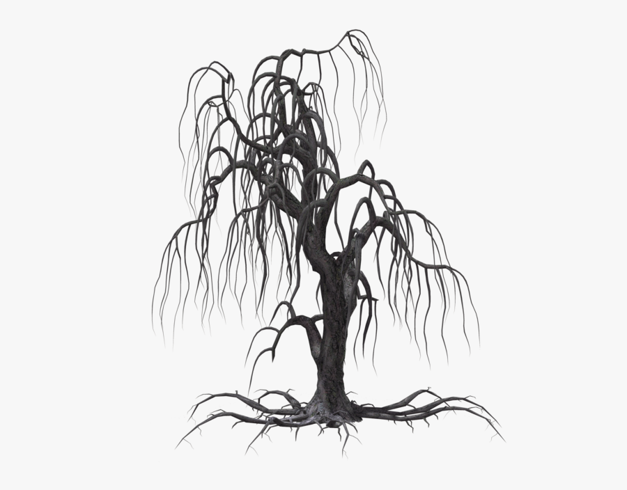 Woods Clipart - Black Creepy Tree Drawing, Transparent Clipart