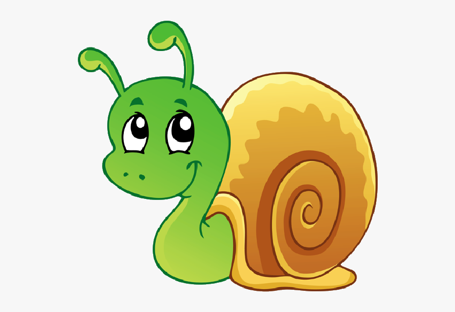 Image Download Use These Free Images - Cartoon Images Of Snail, Transparent Clipart