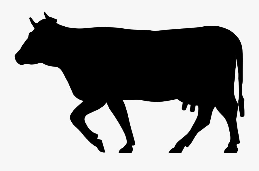 Cows Clipart Shadow - Cow Silhouette Png , Free ...