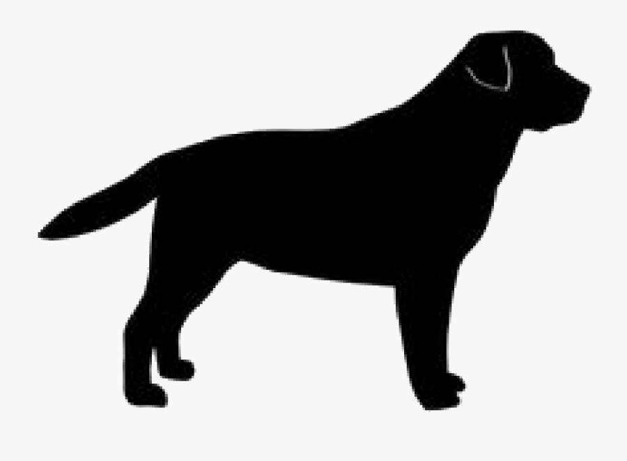 Golden Silhouette Labrador Breed Dog Retriever - Black Dog Logo Png, Transparent Clipart