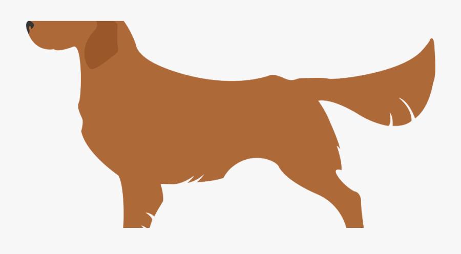 Companion Dog, Transparent Clipart