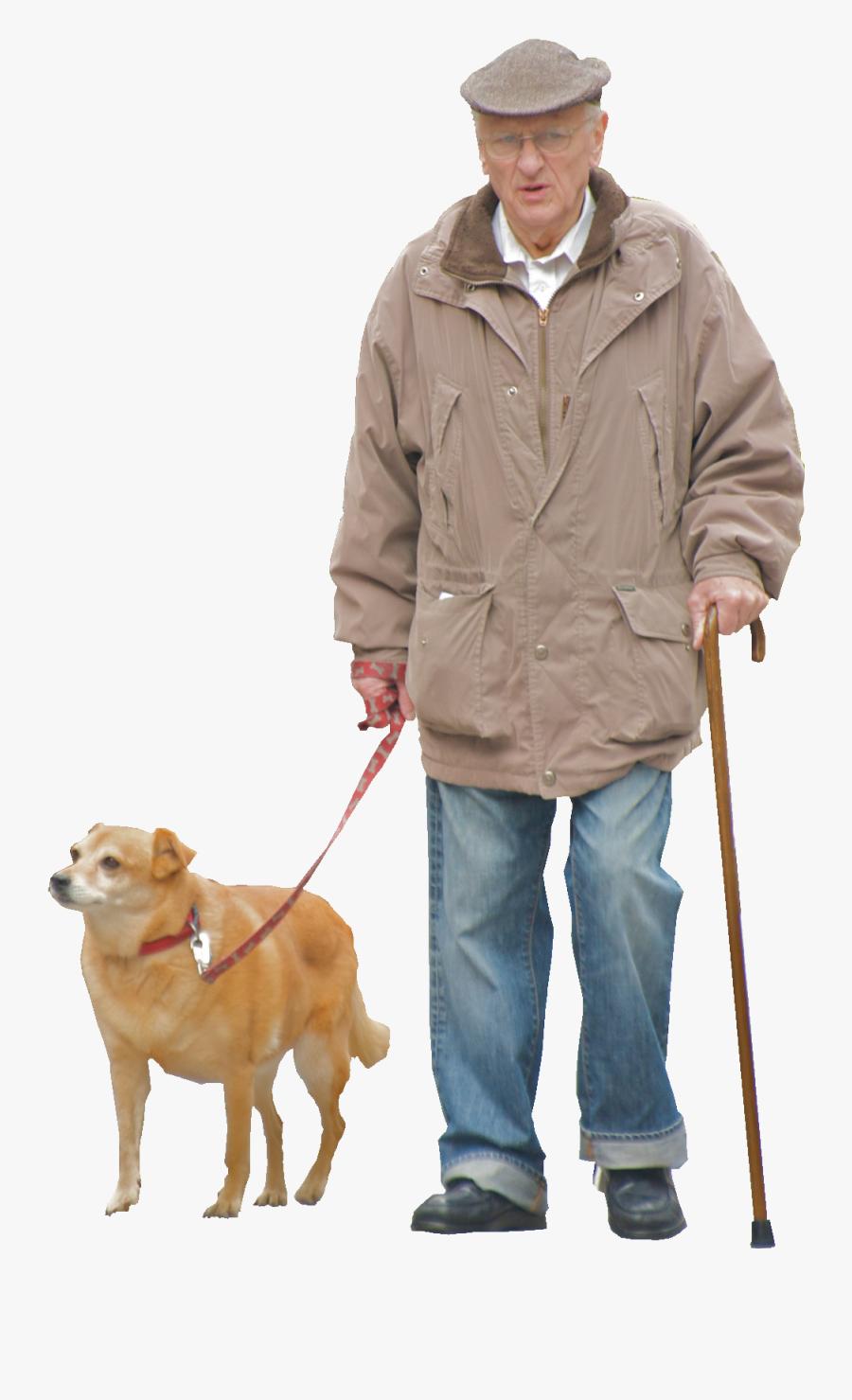 Breed,leash,dog Group,golden Dog Breeds,companion Dog,obedience - Old Man Transparent Background, Transparent Clipart