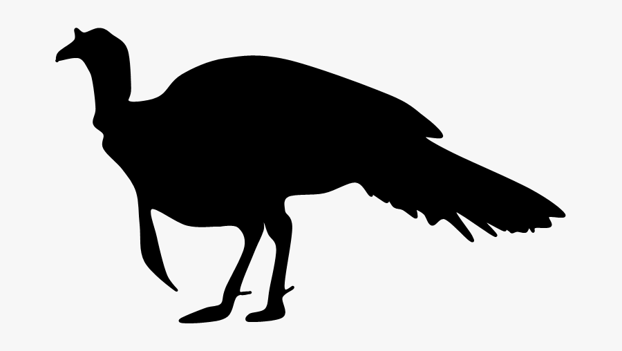 Turkey Silhouette Png - Wild Turkey Clipart Black And White, Transparent Clipart