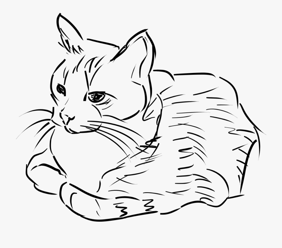28 Collection Of Free Cat Clipart Black And White - Drawing Of Cat Png, Transparent Clipart