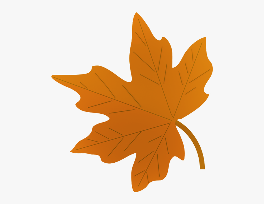 Green Fall Leaf Drawing - Fall Leaves Clip Art, Transparent Clipart