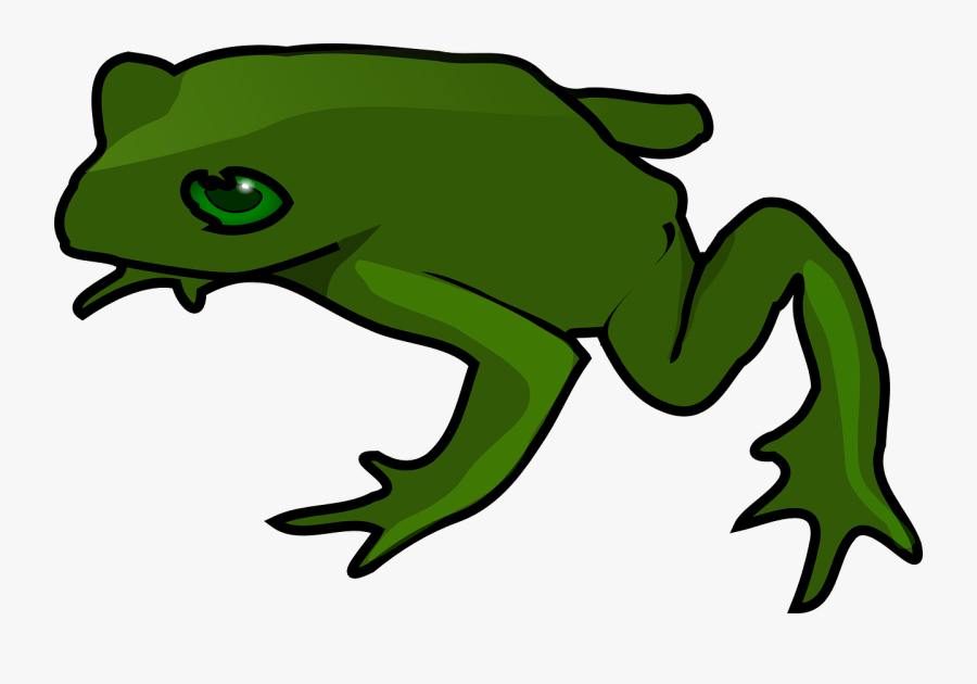 Free To Use Images - Cartoon Frog Transparent Background, Transparent Clipart