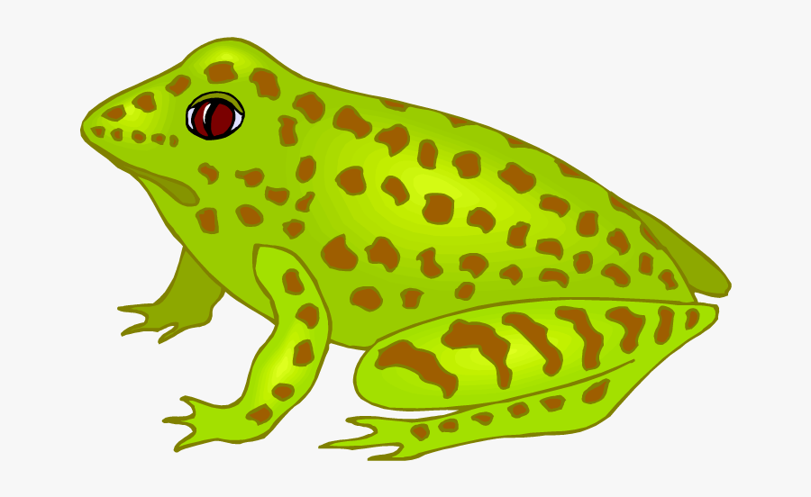 Free Frog Clipart - Glass Frog Clip Art, Transparent Clipart