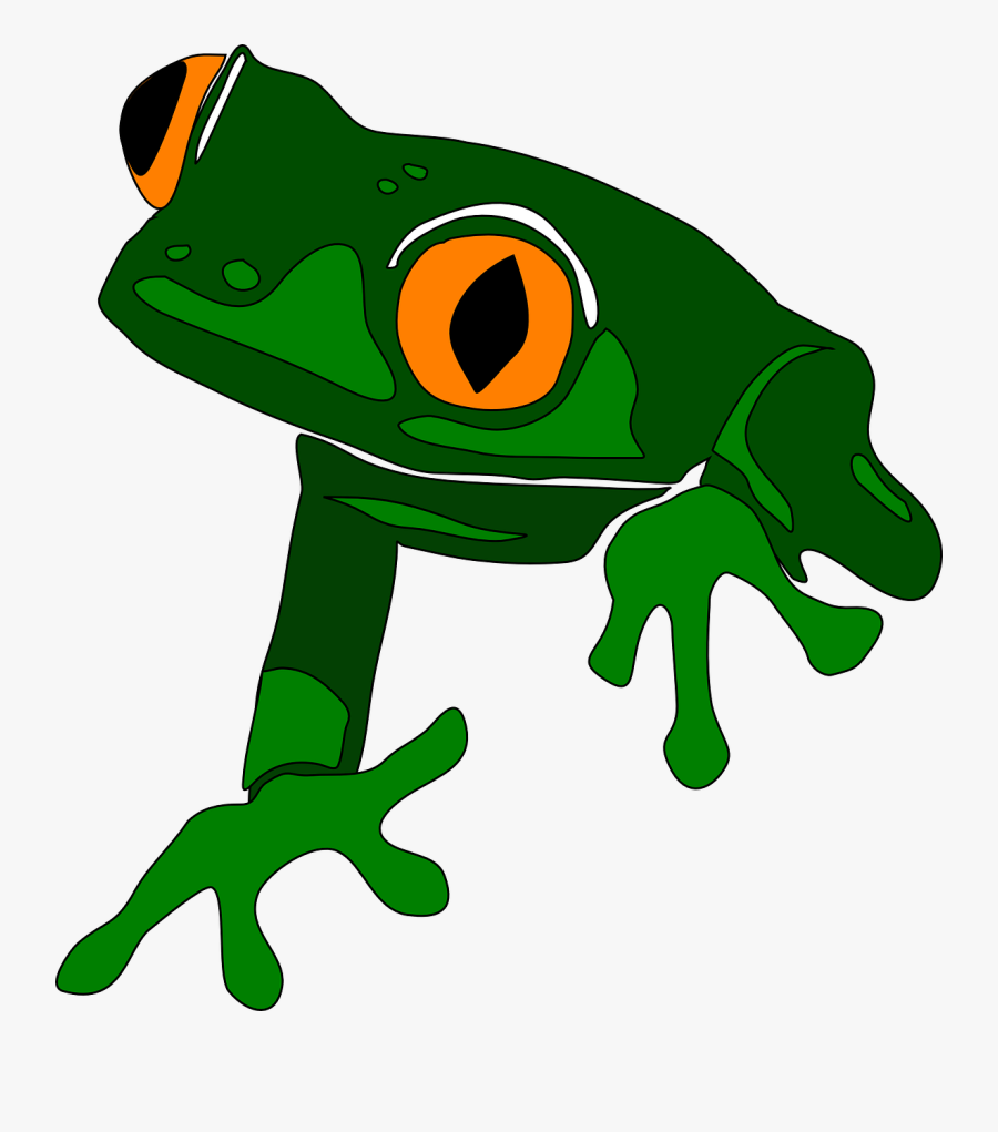 Cute Frog Clipart - Clipart Red Eyed Tree Frog, Transparent Clipart