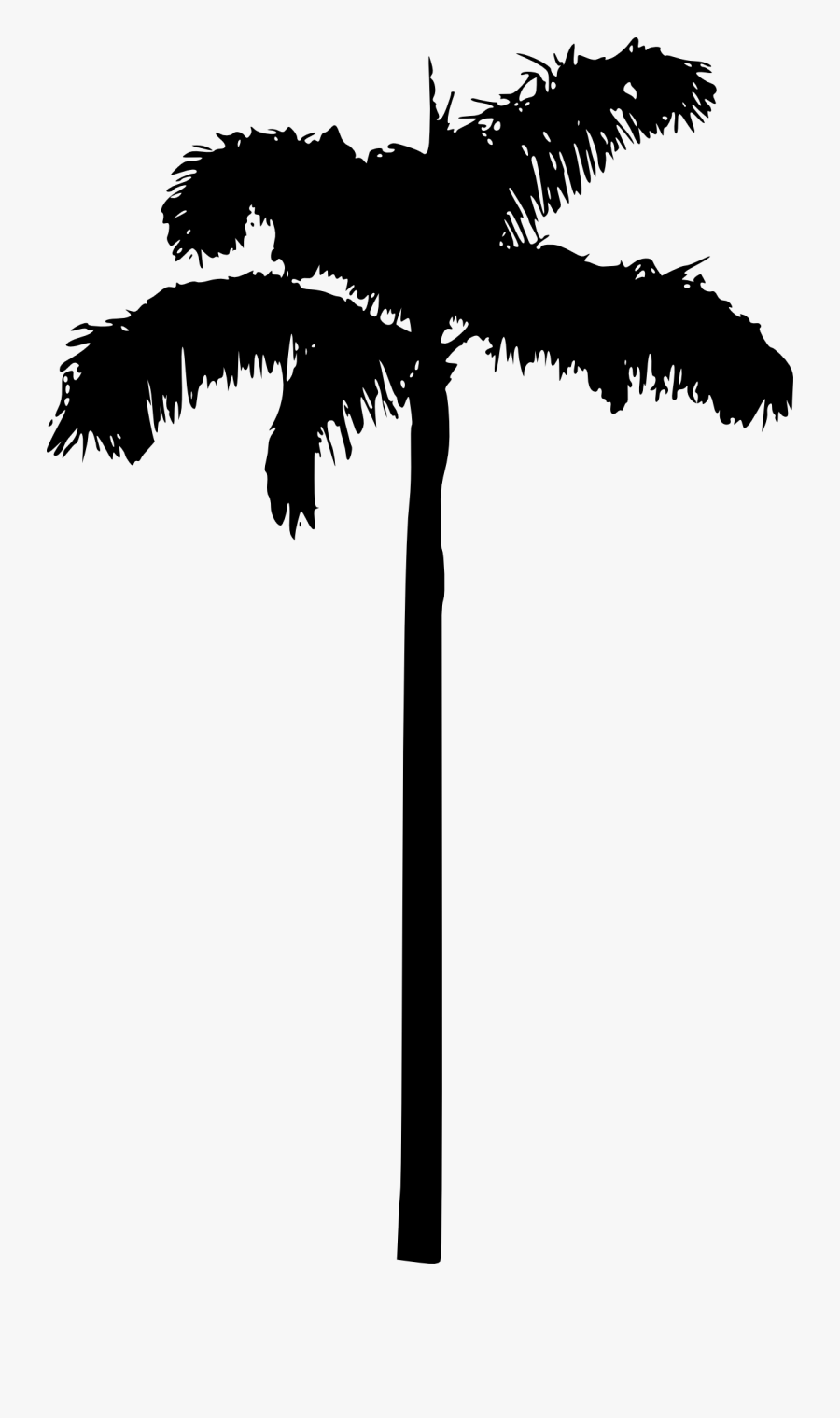 Palm Tree Silhouette Clipart No Background - Palm Tree Silhouette White Background, Transparent Clipart