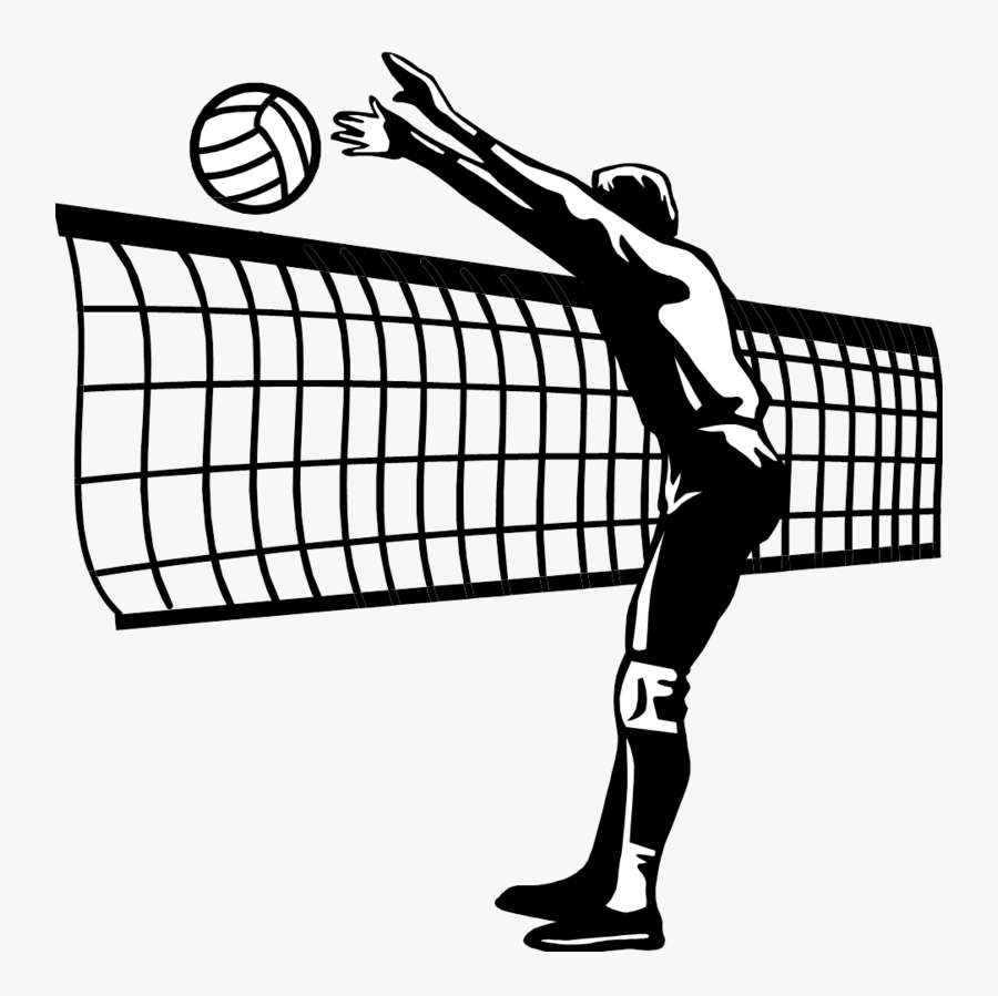 Volleyball Net Clipart Transparent Background Free Transparent Clipart Clipartkey