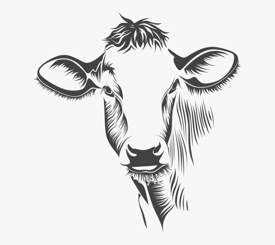 Transparent Cow Clipart Black And White - Cow Face Line Art, Transparent Clipart