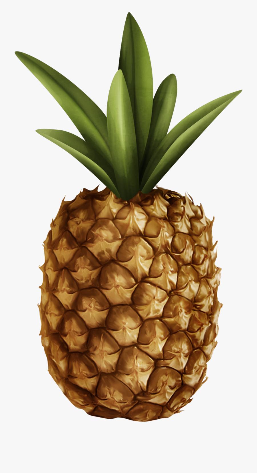 Pineapple Clipart Web - Pineapple, Transparent Clipart