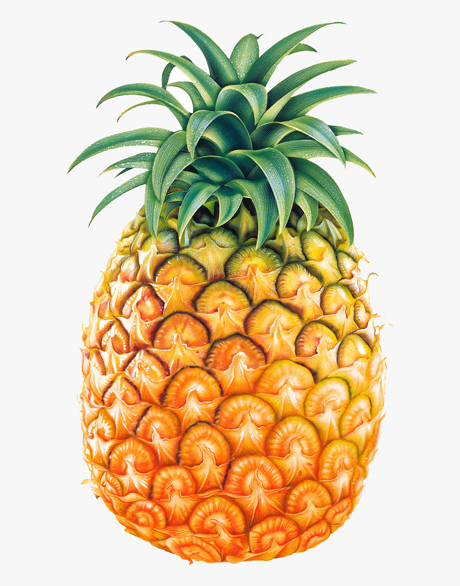 Pineapple Images Free Pictures Download Cliparts - Pineapple Png, Transparent Clipart