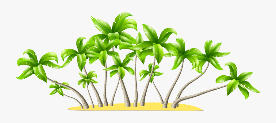 Palm Tree Art Tropical Palm Trees Clip Art Clip Art - Coconut Trees Png, Transparent Clipart