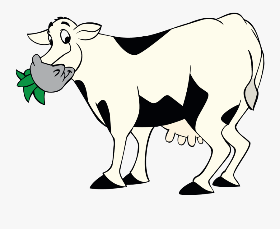 Cow Chewing Grass, Transparent Clipart