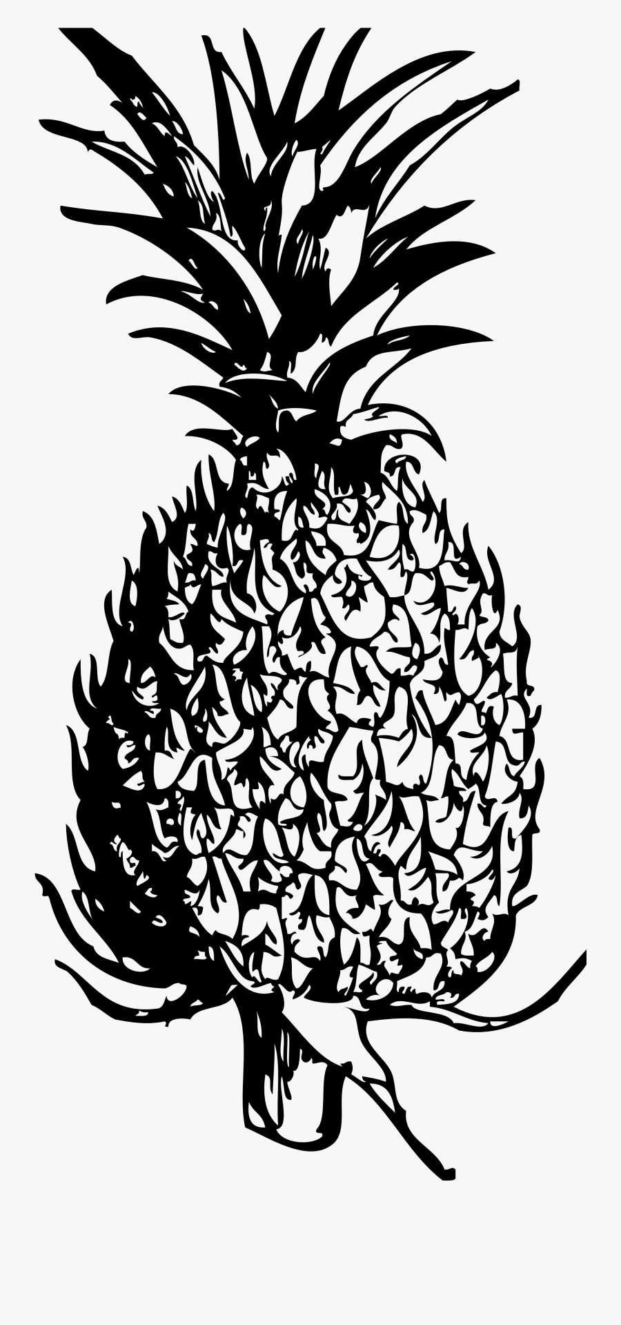 Free Pineapple Black And White Clipart Free Clip Art - Free Pineapple Clipart Black And White, Transparent Clipart