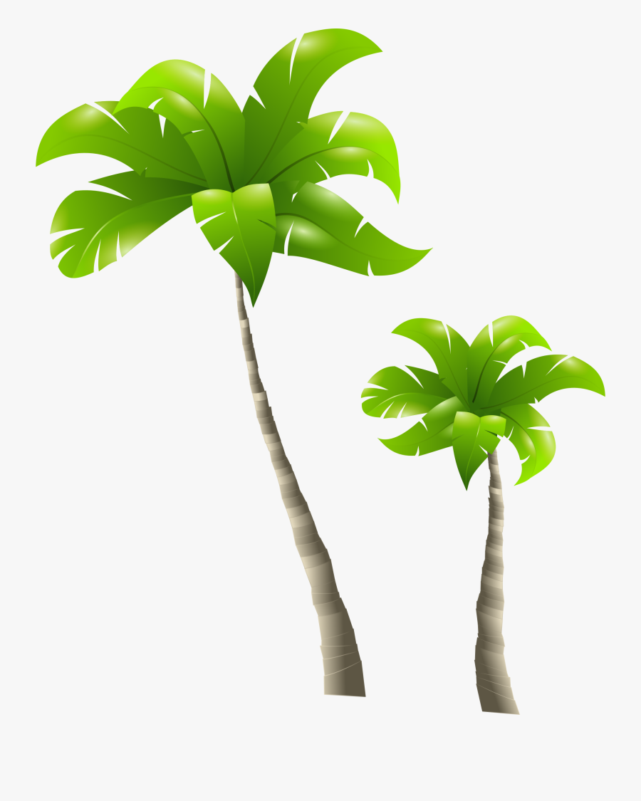 Palm Trees And Beach Clip Art Clipart Palm Trees Download - Tall Tree And Short Tree, Transparent Clipart