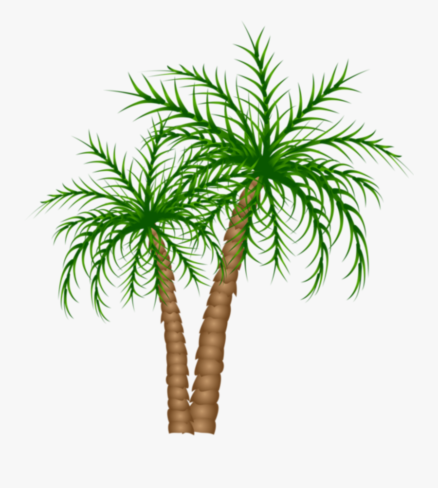 Transparent Palm Trees Clipart - Palm Trees Transparent Background, Transparent Clipart