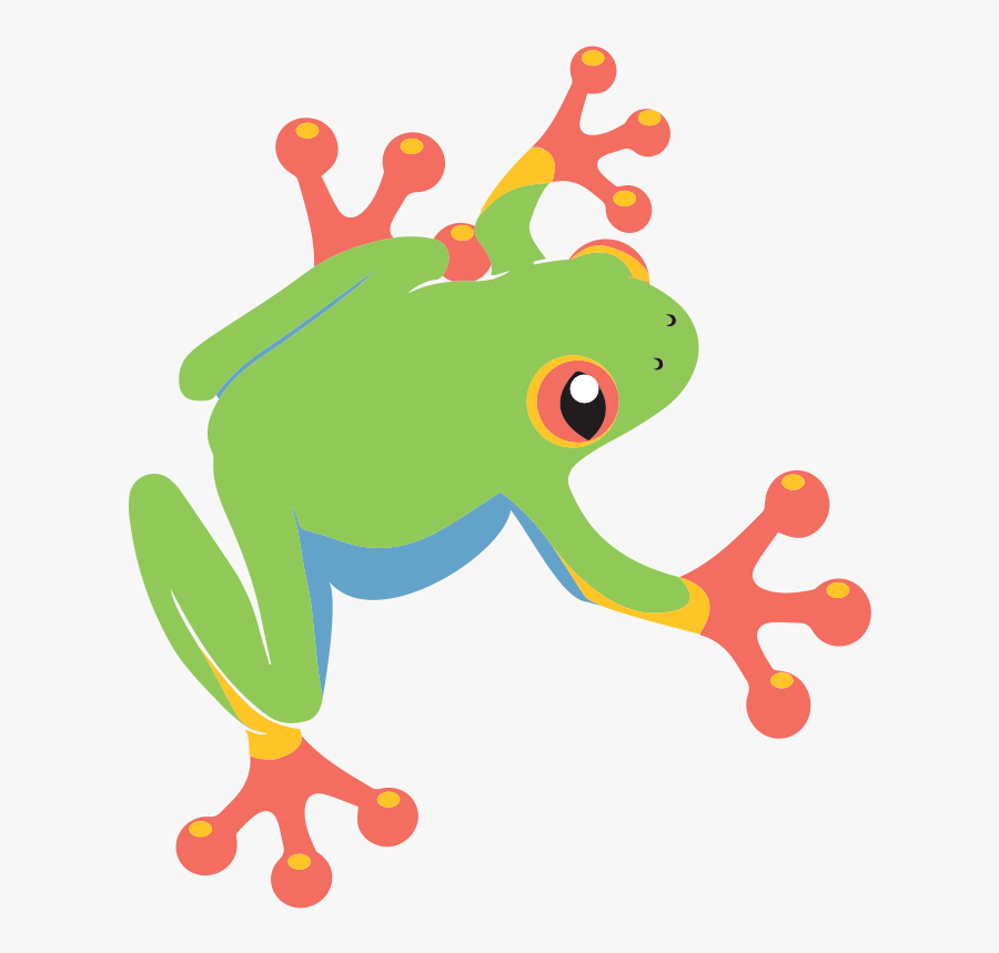 Tree Frog Clipart - Cartoon Red Eyed Tree Frog Clipart, Transparent Clipart
