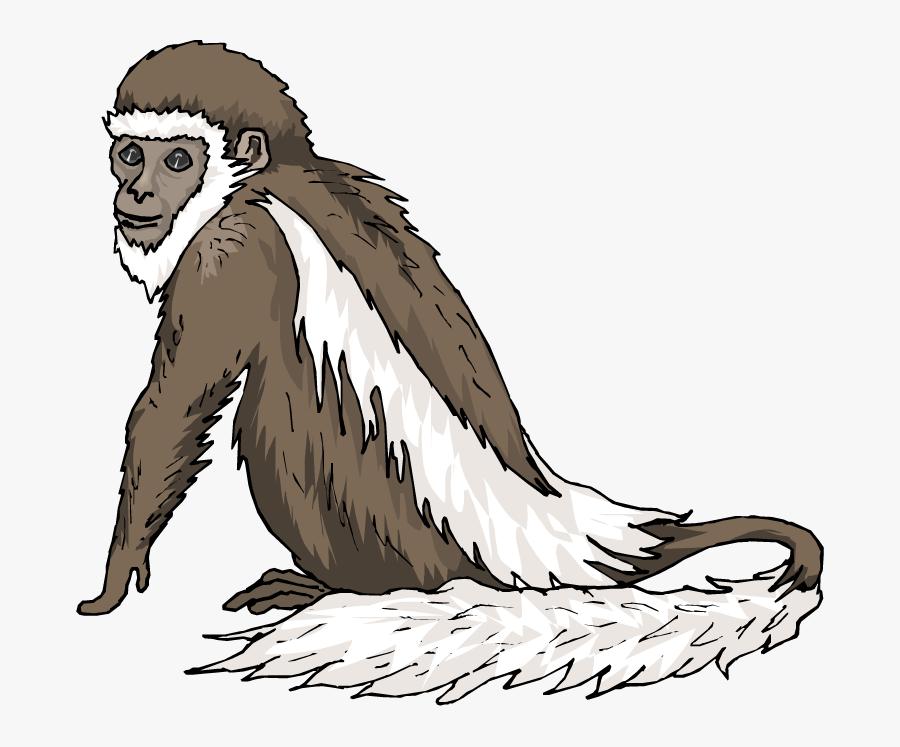 Old Monkey Clipart, Transparent Clipart